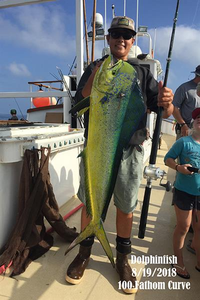 Dolphinfish!