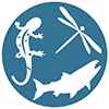 aquatic biodiversity icon