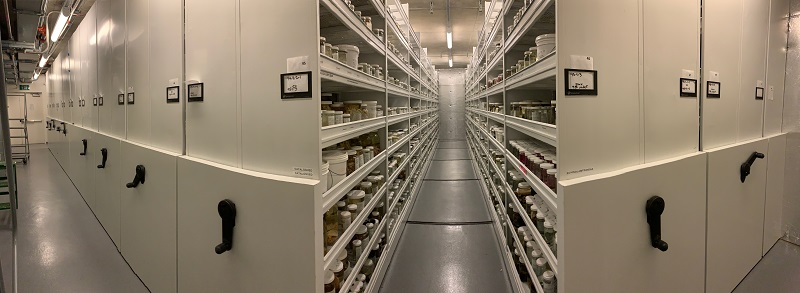 A view of the many rows of storage cabinets in CAS-IZ
