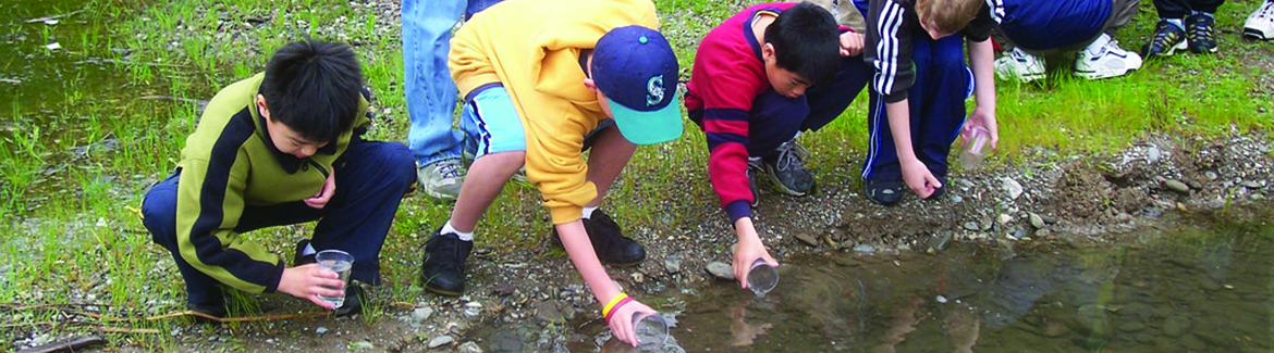 Children releasing fry into a creek