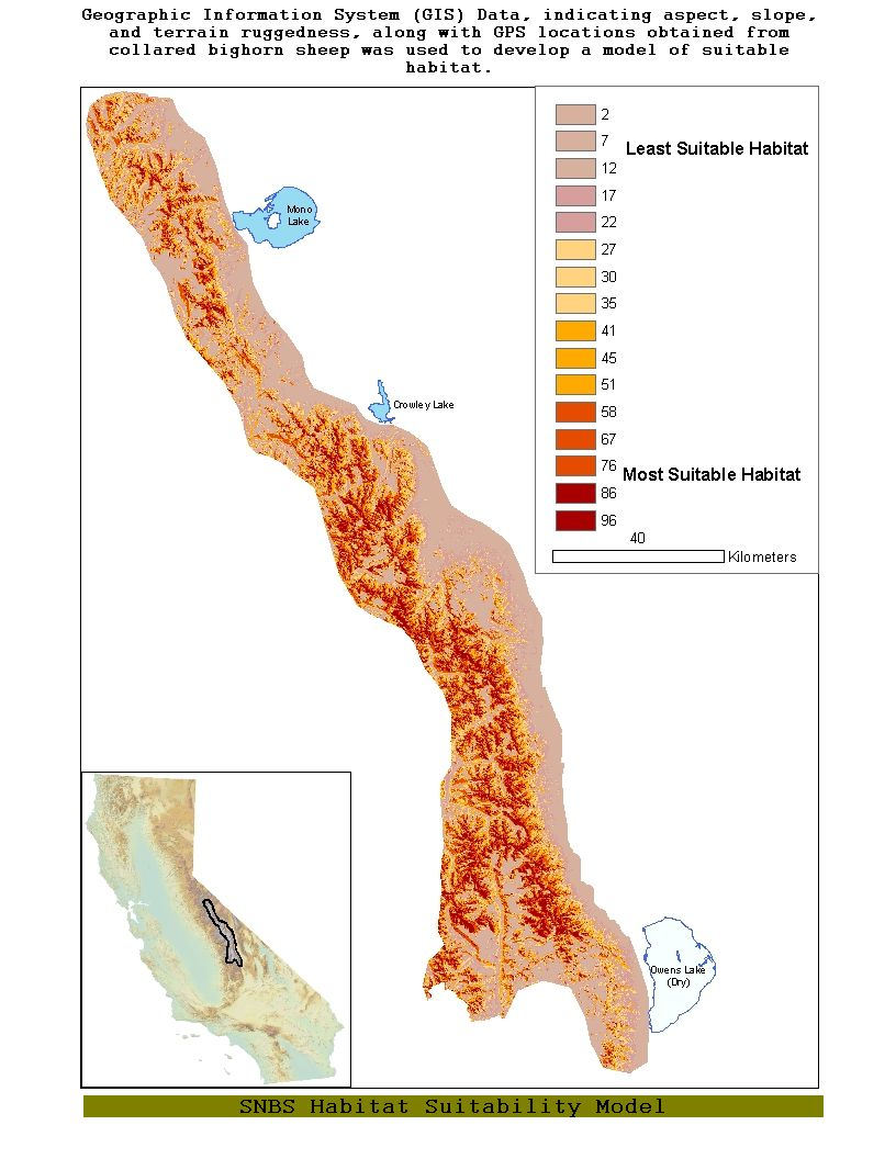 Sierra Nevada Bighorn Sheep Maps And Locations
