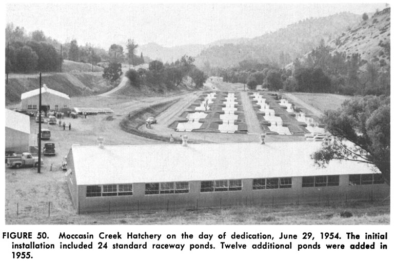 History of moccasin creek hatchery for California fish hatcheries
