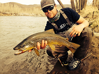 Photograph of a brown trout on the Truckee River