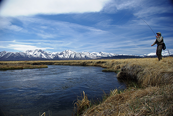 man fishing on the upper Owens River