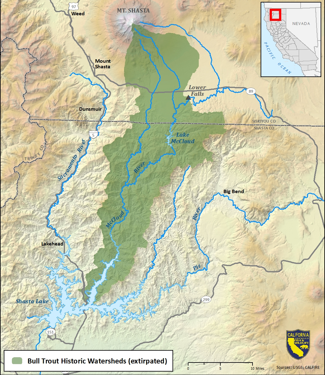 Map of bull trout historic watersheds-link opens in new window