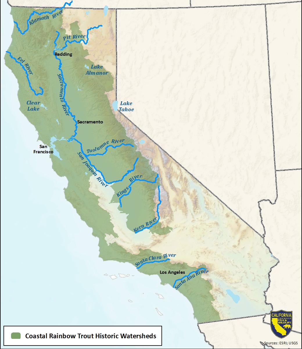 Map of coastal rainbow trout historic watersheds-link opens in a new window