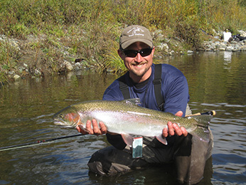 Hatchery steelhead trout captured in the Trinity River