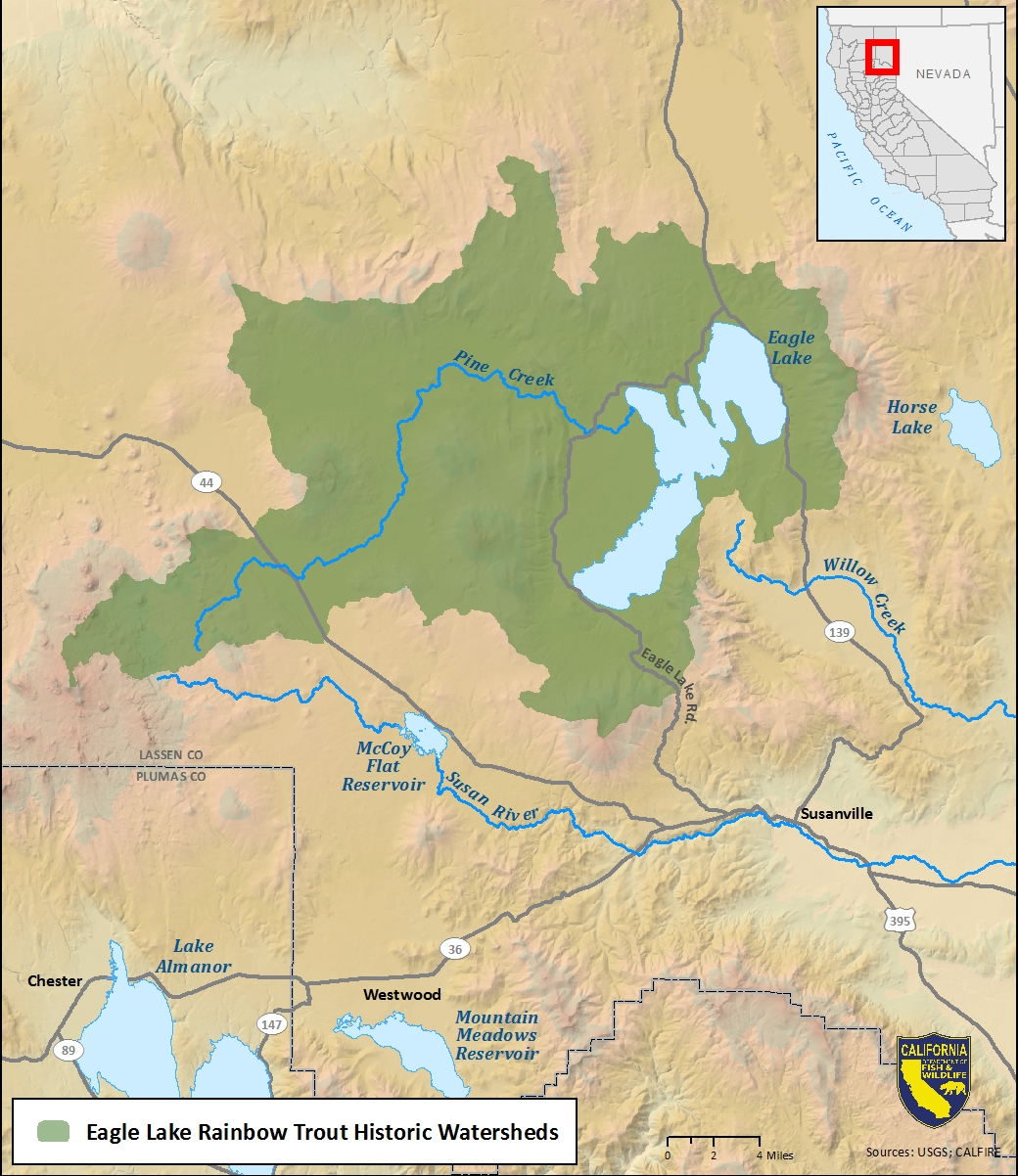 Map of Eagle Lake rainbow trout historic watershed-link opens in new window