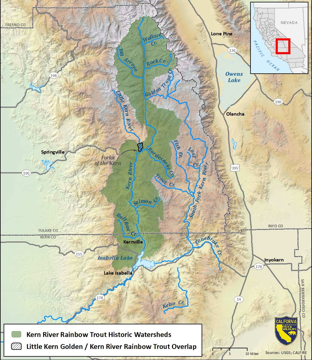 Map of Kern River rainbow trout historic watersheds-link opens in new window