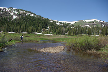 Photograph of the Upper Truckee River