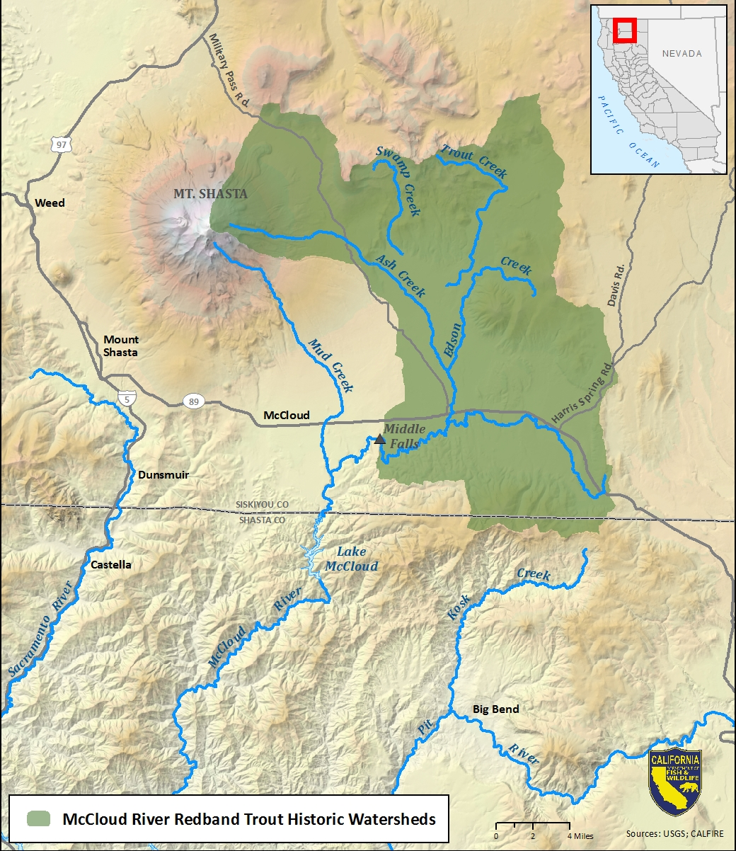 Map of McCloud River redband trout historic watersheds-link opens in new window