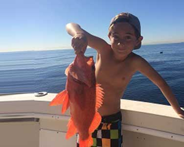 boy holding bright orange fish