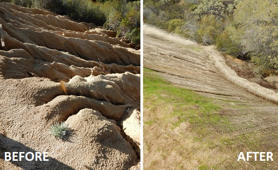 erosion before and after restoration