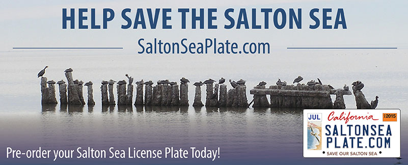 link%20to%20Salton%20Sea%20license%20plate%20site