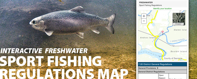 link%20to%20sport%20fishing%20regulations%20map