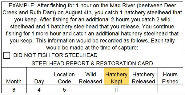 Example of the information on your Steelhed Report Card that should be filled in while you are fishing