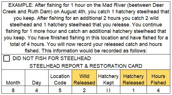 Example of the information on your Steelhed Report Card that should be filled in when you finish fishing for the day or move to a new location code.