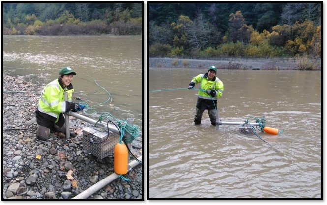 Sonar camera being deployed in the South Fork Eel River