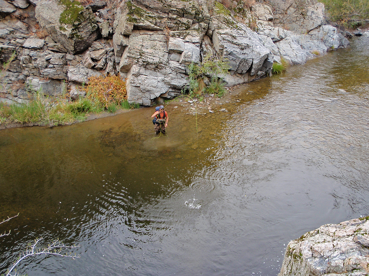 Designated Wild And Heritage Trout Waters