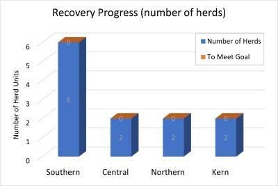 Sierra bighorn recovery progress. All of the required herd units for delisting are occupied for each of the four recovery units.