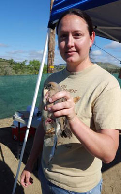 Scientist Abigail Gwinn holding a small brown bird on a boat on the river with blue sky in the background