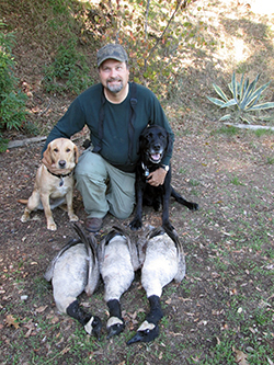 male hunter with two dogs and three dead Canada geese