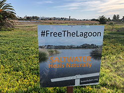 Buena Vista Lagoon sign #Free The Lagoon Saltwater Heals Naturally