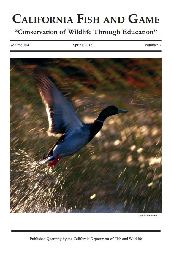 Image of journal cover depicting a mallard duck taking off out of the water
