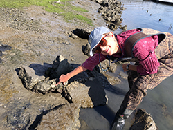 A woman wearing camouflage waders stands in shallow water and points to a clam shell embedded in the muddy bank of a slough