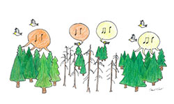 illustration of drawn trees with musical notes