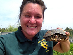 A woman wearing a green California Departmetn of Fish and Wildlife shirt holds a pond turtle