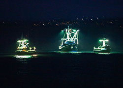 three fishing fleet ships with lights at night on the ocean - click to enlarge in new window