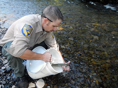 New Heritage Trout Production Program for Inland Fisheries