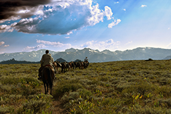 A pack train of seven loaded mules and three riders on horseback traverse a high mountain plain under a partly cloudy sky