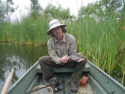 scientist in a boat on the river holding a small green fish with tall grass in the background