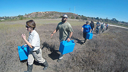 Seven adults carry pet carrier boxes across a coastal meadow