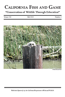 Scientific Journal cover with photo of bird sitting in wooden pole