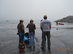 Three people standing on beach with back to camera, facing the water with orange bucket and blue kayak. Man with red kayak in water in background.