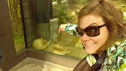 Woman wearing sunglasses pointing to fennec foxes behind glass