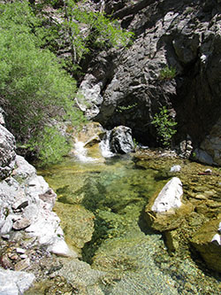 Small river pool of water featuring a small waterfall trees, rocks and steep, rocky terrain