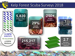 Graphic depicting Kelp Forest Scuba Surveys 2018