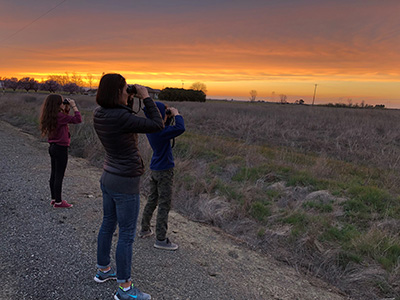 Woman, boy, and girl holding and looking through binoculars in direction of field from road. Sunset in background.