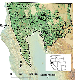 map featuring locations of bird surveys throughout Northern California in a region representing more than 40 percent of all California's coniferous forests.