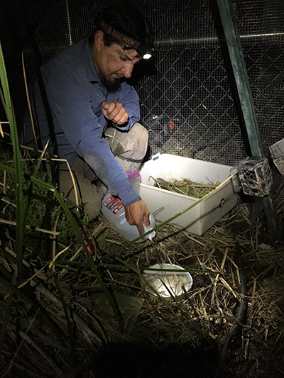 Man in dirty brown pants, blue jacket, and headlamp on forehead kneeling with jug of water pouring into small metal dish next to white drawer. Tall grass in foreground and fence immediately behind man.