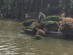 Two men wearing hats and life vests aboard small boat on body of water piled with old christmas trees. Some trees are submerged in water body. Live tree forest in background.