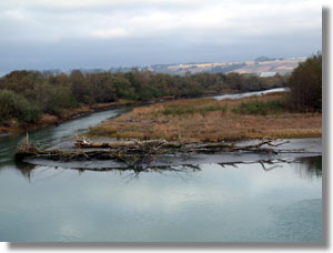 Ropers Slough, tributary to the Eel River Estuary, Humboldt County. CDFW photo by Steve Cannata.