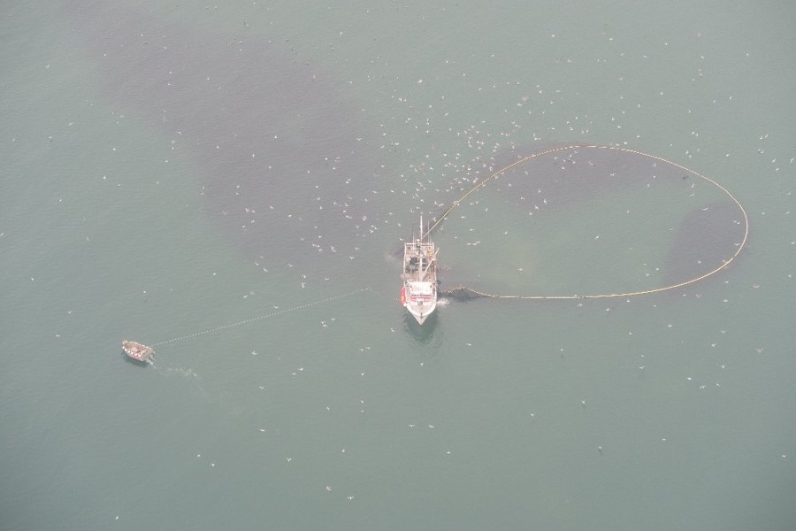 Purse seine wrapping anchovies