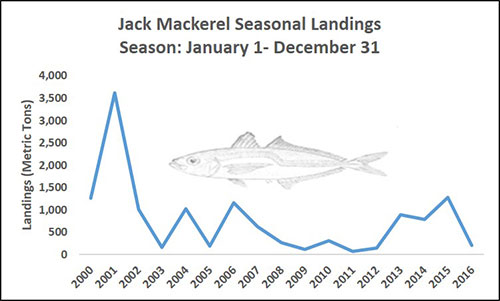 Chart of Jack Mackerel Seasonal Landings Season: January 1 - December 21