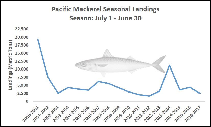 Graph showing seasonal landings of Pacific Mackerel