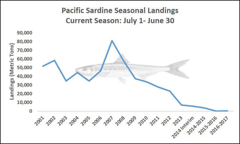 Graph showing seasonal landings of Pacific Sardine